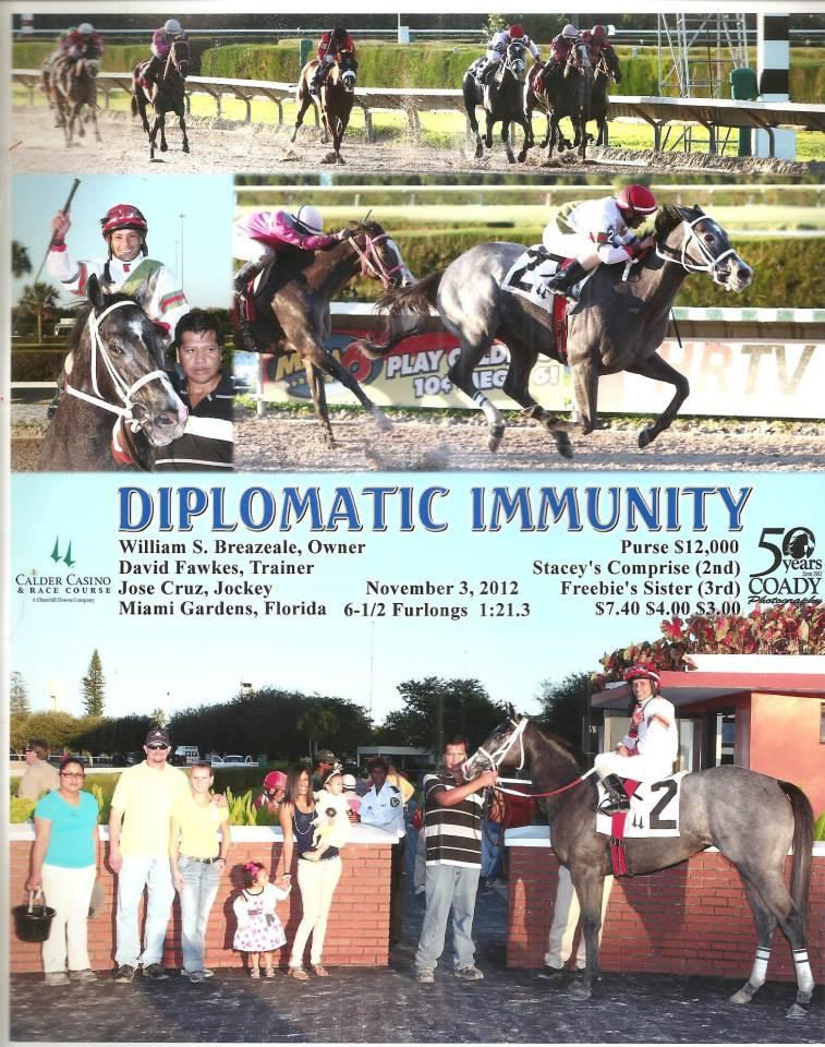 Diplomatic Immunty32