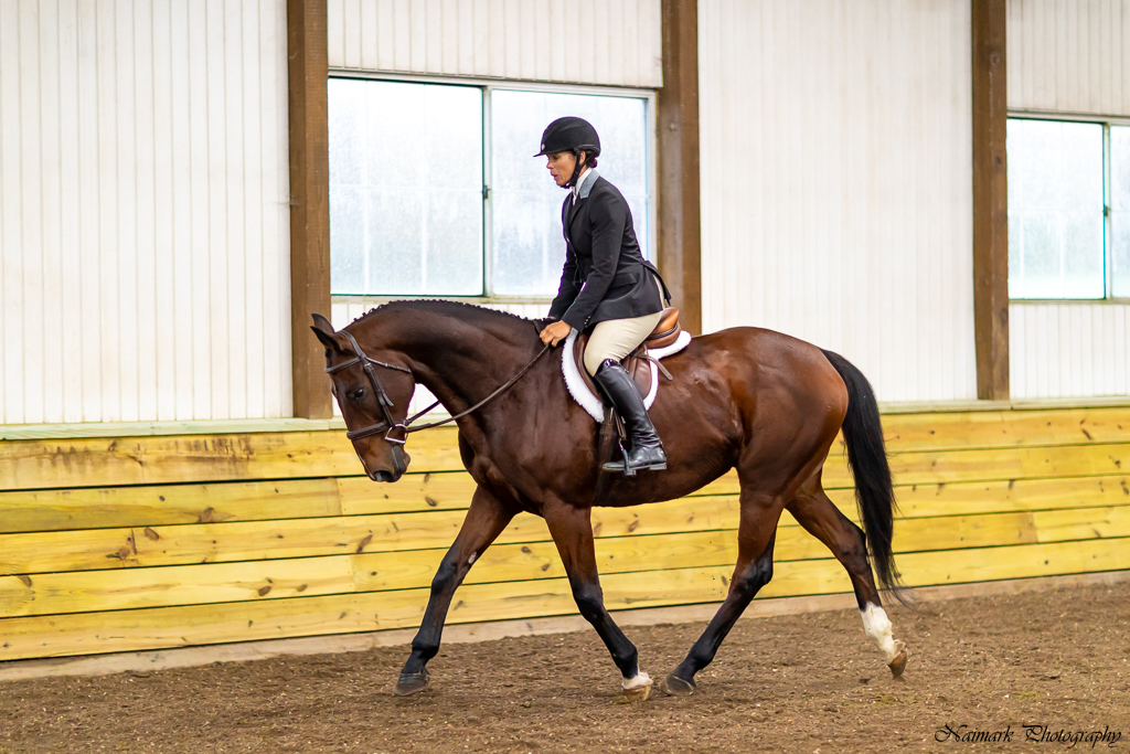 Second Chance Thoroughbreds, Inc  | Known for their athleticism